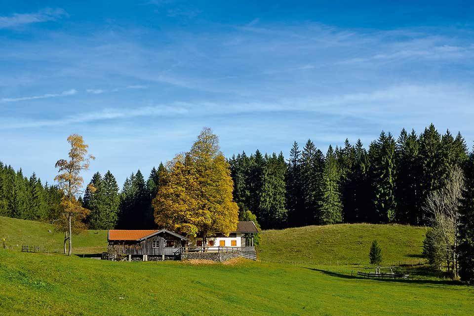 Wirtsalm im Herbst, Jenbachtal bei Bad Feilnbach, Oberbayern. Foto: Lisa und Wilfried Bahnmüller / J. Berg Verlag