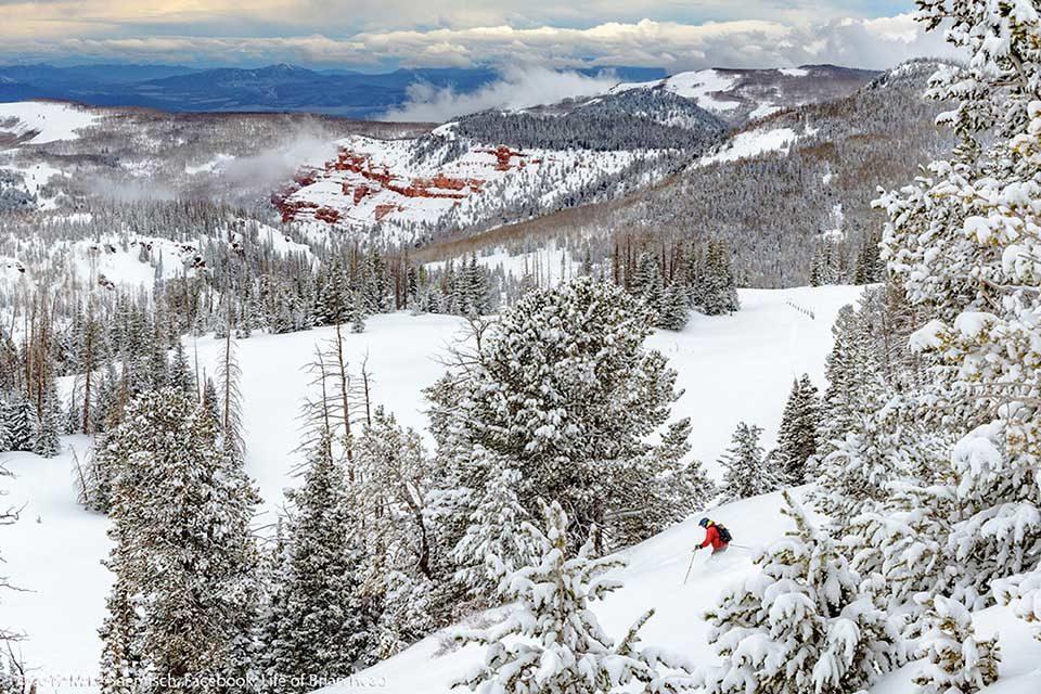 Skifahren im Brian Head Resort. Credit: Briand Head Resort│Utah Office of Tourism