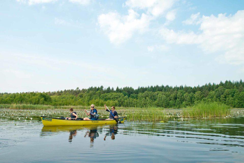 In der Mecklenburgischen Seenplatte bleiben Paddler flexibel – viele Verleiher bringen das Boot an den Wunschort oder holen es ab. / Bildnachweis: 1000seen.de/Christin Drühl