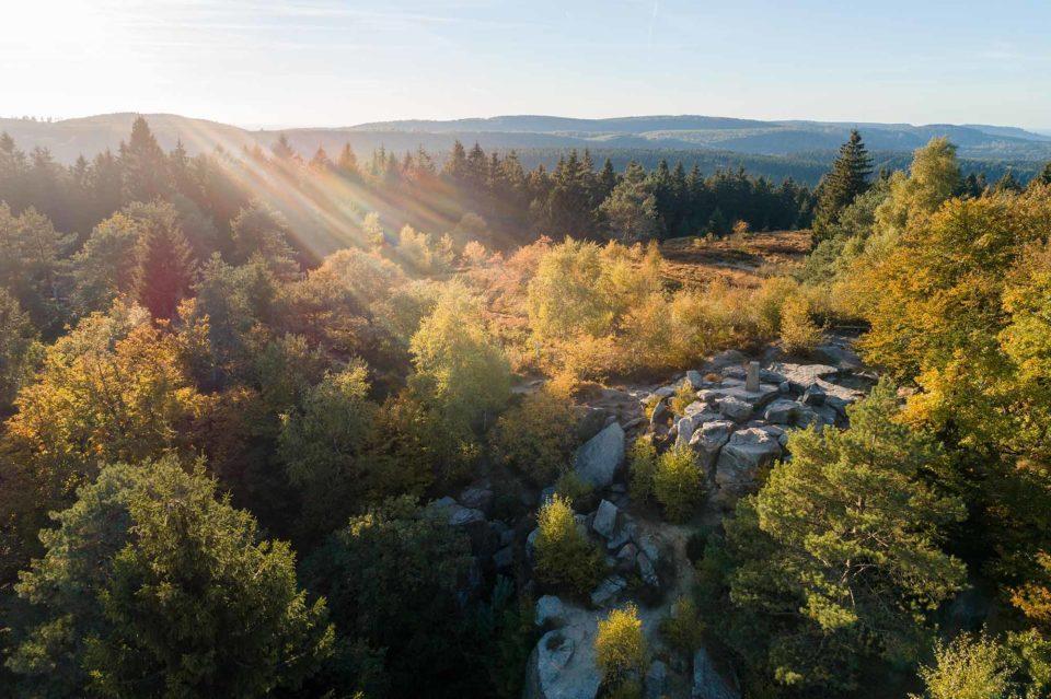 Teutoburger Wald in der Nähe von Horn-Bad Meinberg / Copyright Tourismus NRW e.V.